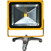 Lind Equipment LE965LEDC-FS Battery Powered Portable Hd Led Flood Light - 30W, Floor Stand