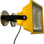Lind Equipment LE970LED-MAG Portable Heavy-Duty Led Flood Light - 50W, Magnet Mount