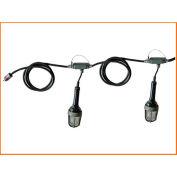 Lind Equipment TLS-50XPBL preuve Expl Stringlights, 50', 5 lumières, w/nu termine (aucune fiche & connecteur)