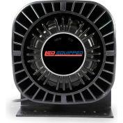 Northern Shrike 100 Watt Speaker - A-1121