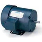 Leeson 121093.00, Standard Eff., 1.5 HP, 1440 RPM, 220/380/440V, 50 Hz, 145T, IP54, Rigid