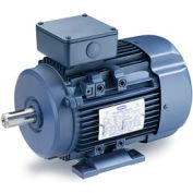 Leeson Motors Motor IEC Metric Motor-4.0HP, 230/460V, 1740/1430RPM, IP55, B3, 1.15 SF, 85.5 Eff.