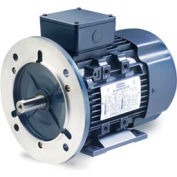 Leeson Motors Motor IEC Metric Motor-15HP, 230/460V, 1765/1460RPM, IP55, B3/B5, 1.15 SF, 91 Eff.