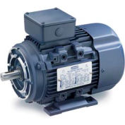Leeson Motors Motor IEC Metric Motor-15HP, 230/460V, 1765/1460RPM, IP55, B3/B14, 1.15 SF, 91 Eff.