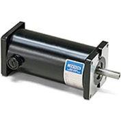 Leeson Motors DC Motor-.05 - .1HP, 12-24V, 1750-4200RPM, TENV, Sq. flange