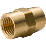 "Brass Yellow Barstock 1/8"" Coupling Npt Female - Pkg Qty 75"