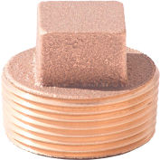 1-1/4 In. Lead Free Brass Plug - MNPT - 125 PSI - Import