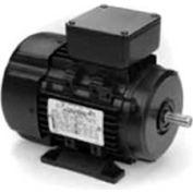 Marathon Motors Metric Motor, R351A, 100LTFC6501, 4-3HP, 3600RPM, 230/460V, 3PH, 100L FR, TEFC