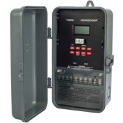NSI TORK® DZM200BP Astronomic Digital Momentary Timer w/Holiday & Memory Module, 2 Channel, 20A