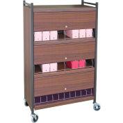 Omnimed® Standard Vertical Cabinet Chart Rack with Locking Panel, 24 Binder Capacity, Woodgrain