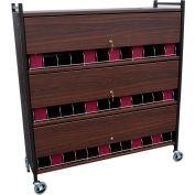 Omnimed® Large Vertical Cabinet Chart Rack with Locking Panel, 36 Binder Capacity, Woodgrain