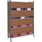 Omnimed® Large Vertical Cabinet Chart Rack with Locking Panel, 48 Binder Capacity, Woodgrain