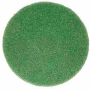 "Bissell Commercial 12"" Cleaning Pad, Green - 437.056"