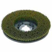 "Bissell Commercial 17"" Nylon Grit Brush, Green/Gray - 813017"