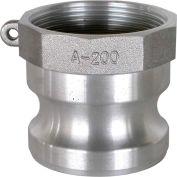 """2"""" raccord Camlock d'aluminium - coupleur mâle x FPT fil"""