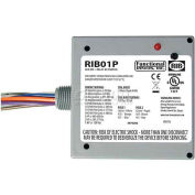 RIB® Enclosed Power Relay RIB01P, 20A, DPDT, 120VAC