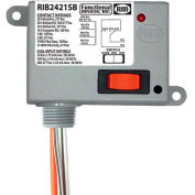 RIB® Enclosed Power Relay RIB2421SB / 20A / SPDT-NO 24VAC / DC / 120VAC / 208-277VAC / Override