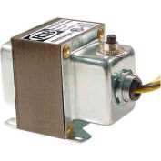 RIB® Transformer TR100VA001, 100VA, 120-24V, Single Hub, Foot Mount, Circuit Breaker