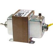 RIB® transformateur TR100VA002, 100VA, 120-24V, double Hub, pied Mont, disjoncteur