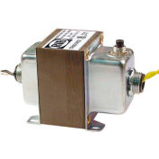 RIB® Transformer TR100VA002, 100VA, 120-24V, Dual Hub, Foot Mount, Circuit Breaker