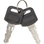 Global Industrial™ 2Pcs Replacement Keys for Charging Cabinets/Carts 985748, 251761, 987877