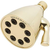 Speakman Anystream® Icon 8-Jet Shower Head, Polished Brass Finish, 2.5 GPM