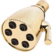 Speakman Anystream® icône tête 6-Jet douche, laiton poli, 2,5 gal/min