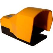 Tecno Elettrica Ravasi (T.E.R.), PF18620010 Foot-Switch, Standard Thermoplastic Cover, 1 N.O.+1 N.C.