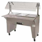 Portable Buffet Table, Ice Cooled, (2) Pan Size, Solid Base, Black