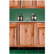 """Summit FF6BKBI7FR - Built-In Undercounter All-Refrigerator, BK, SS Door Frame To Accept Custom Pane"