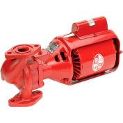 Cast Iron Series 100 NFI Pump 1/12 HP Single Phase