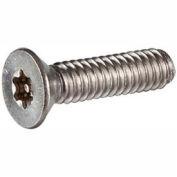 """#10 x 1-1/4 """"sécurité vis à métaux - plate Torx Plus tête - en acier inoxydable 18-8 - FT - USA - 100 Pk"""