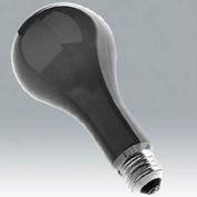 Ushio 1000264 Ebw, Ps-25 No. B2/Blue, 500 Watts, 6 Hours Bulb - Pkg Qty 24