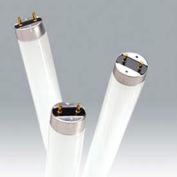 """Ushio 3000102 F32t8/850, 48"""" 86cri, T8, 32 Watts, ampoule de 24000 heures, qté par paquet : 25"""