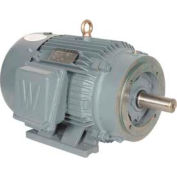 Worldwide Electric T-Frame Motor PEWWE25-18-284TC, GP, TEFC, Rigid-C, 3 PH, 284TC, 30.8 FLA