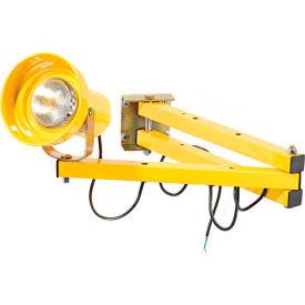"Global™ Double Arm Dock Light with 40""L Reach, Par38 or BR40 bulb compatible"