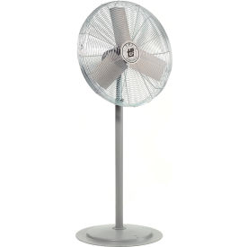 TPI HDH24GP, 24 Inch Pedestal Fan Non Oscillating Gray 1/2 HP 5600 CFM 1 PH Totally Enclosed Motor
