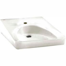 American Standard 9140 047 020 Wheelchair User Bathroom