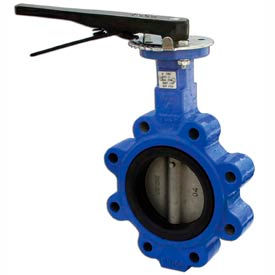 "2"" Lug Style Butterfly Valve W/ Viton Seals and 10 Position Handle"