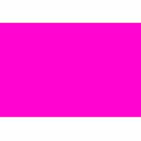 """2-3/4"""" x 4"""" Fluorescent Pink"""