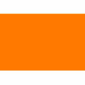 "3"" x 6"" Fluorescent Orange"