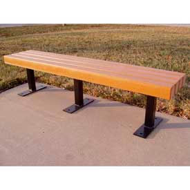 Trailside Bench, Recycled Plastic, 6 ft, Cedar