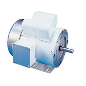 Leeson Motors Motor Washdown Motor-1/3HP, 115/208-230V, 1725RPM, TEFC, RIGID C, 1.15 SF, 62 Eff.