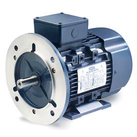 Leeson 192035.00 IEC Metric Motor, 0.5HP, 230/460V, 1695 RPM, IP55, B3/B5, 1.15 SF, 74 Eff.