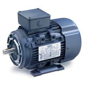Leeson Motors Motor IEC Metric Motor-.75HP, 230/460V, 3400/2780RPM, IP55, B3/B14, 1.15 SF, 74 Eff.