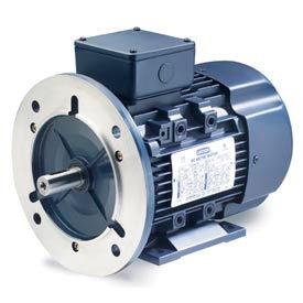 Leeson Motors Motor IEC Metric Motor-3HP, 230/460V, 1750/1430RPM, IP55, B3/B5, 1.15 SF, 87.5 Eff.