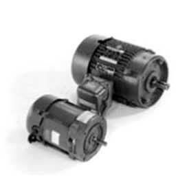 Marathon Motors Metric Motor, G843, 056T17E5313, 1/3HP, 1800RPM, 575V, 3PH, 56C FR, EPNV