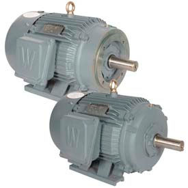 Worldwide Electric General Purpose High Efficiency Motors, 3-Phase, TEFC