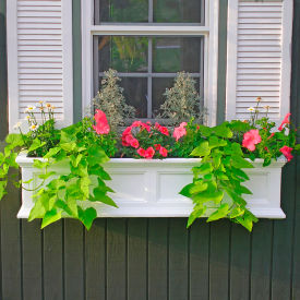 Window Boxes & Deck Planters