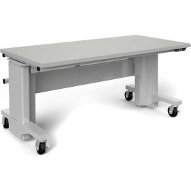 Mobile Ergonomic Adjustable Laboratory Workbenches